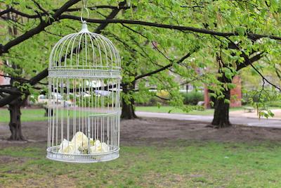 Happily Ever After Hochzeit Verleih Berlin Vogelkäfig weiß